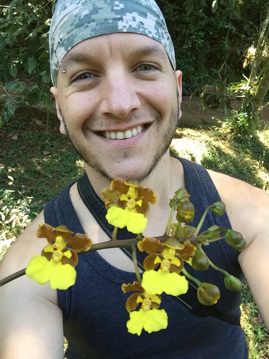 Today's #orchidselfie is in the company of Trichocentrum bicallosum, another of my all-time favorites. #orchids #orchidspecies #todayatwork #orchidaceae #flowers #botany #guatemala<br>http://pic.twitter.com/j1I4MIlUjd