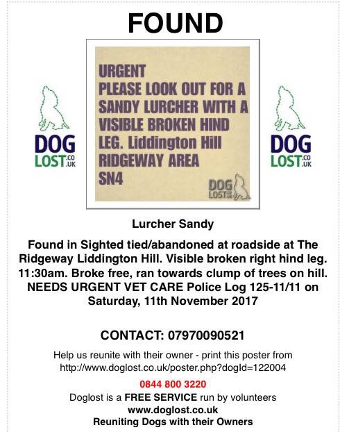 #FOUND #Sighted tied &amp; abandoned at roadside at the #Ridgeway #LiddingtonHill  Visible #BROKENLEG on right  10/11 11.30am  Broke free&amp;ran toward clump of trees on hill  #Swindon PLS RT&amp; lookout NEEDS #vet <br>http://pic.twitter.com/quFjjAhwkQ