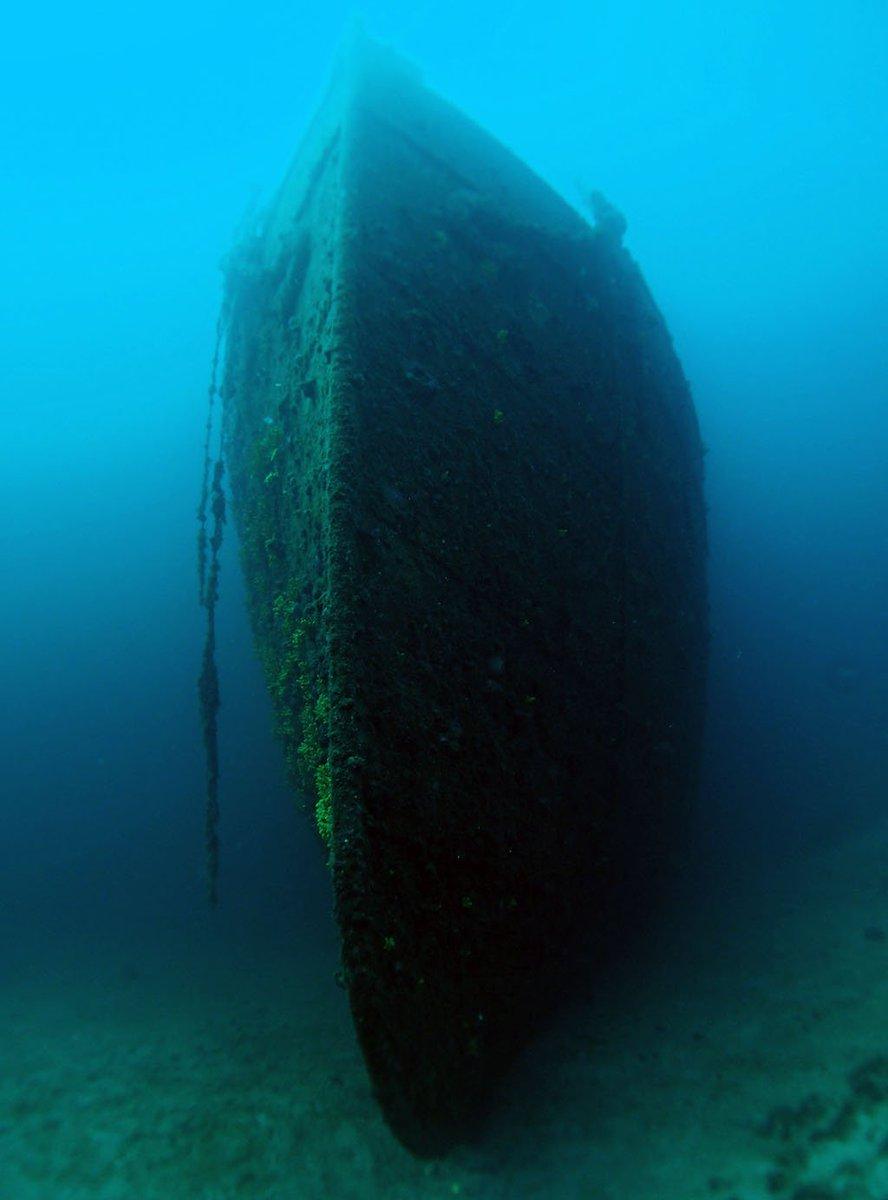 Best Dive Sites: Lina Wreck, Croatia  https://www. diveglobal.com/divesite/lina- wreck/ &nbsp; …  #linawreck #croatia #dive #wreck #shipwreck #scuba #diving #kvarner #adriatic #mediterranean #ronjenje #brodolom #best #divesite #diveglobal<br>http://pic.twitter.com/wIU1Dy4iYi