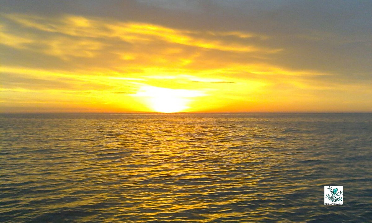 Good vibes to everyone  #Ibiza sunrise yellow is a good luck colour  #Baleares #spain  meditation time saluting the sun #travel #ttot <br>http://pic.twitter.com/ucFkuz2E1N