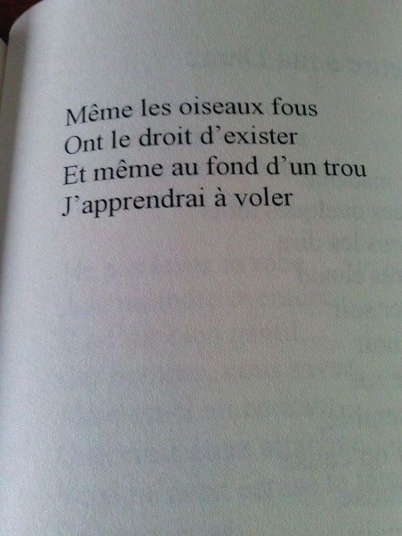 Favori Citation Livre (@LivreCitation) | Twitter NM64