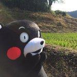 おはKUMAMONday〜!今週もエイエイモーン! pic.twitter.com/1iPnDzef…