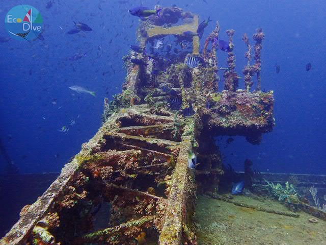 The Veronica L is a wreck dive that pleases divers again and again. Don&#39;t miss night diving on this wreck!  #PureDiving #PureGrenada #Wreck <br>http://pic.twitter.com/kv1u3nZJIQ