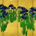 京都国立博物館で開催中の「国宝」展、明日11/14からの4期に、いよいよ当館所蔵の「燕子花図屏風」が…