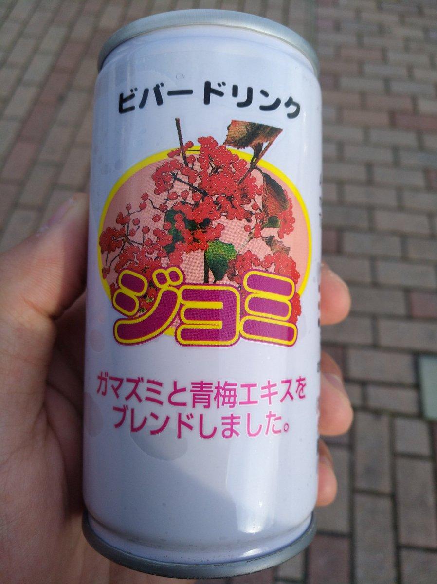 味の想像がつかなすぎる飲み物を買いました