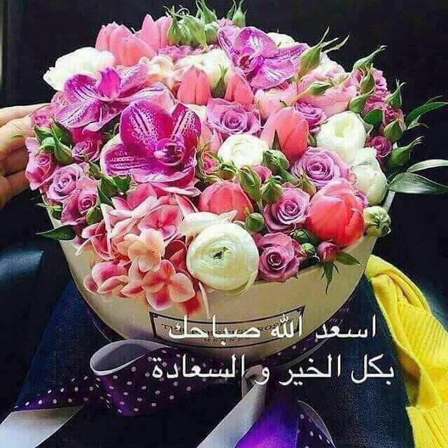 May Sayegh Maygsayegh تويتر Good Morning