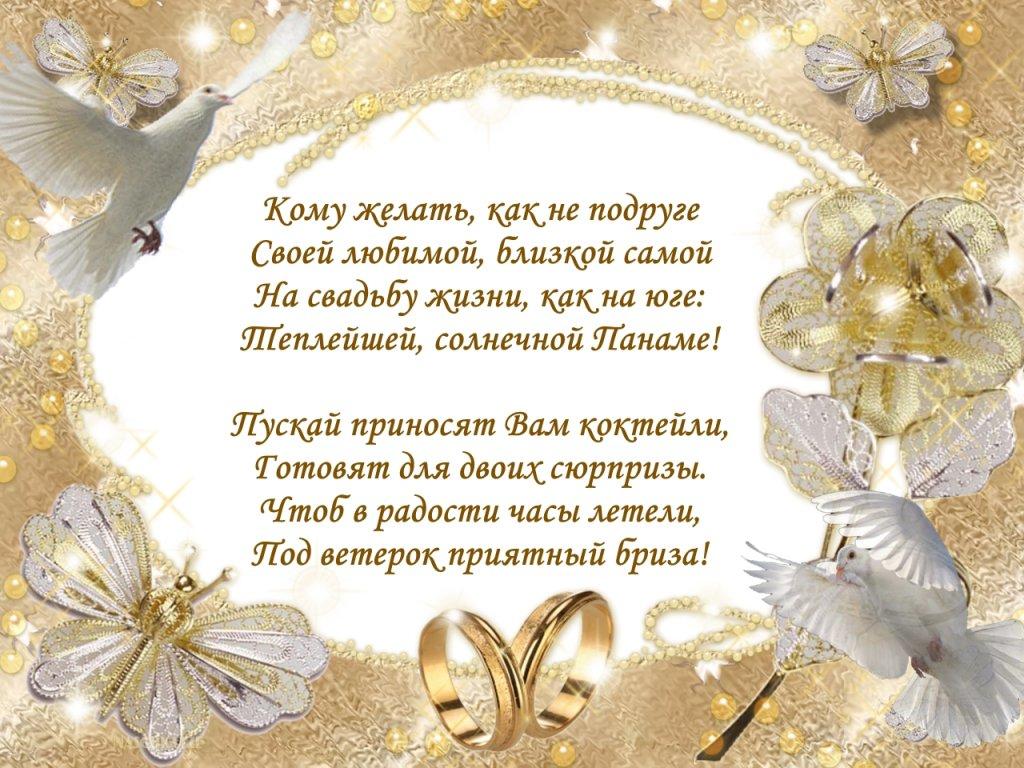 Котики, открытки поздравление на свадьбу в стихах