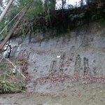 チバニアン「地質学大国」イタリアに大差で勝利 地磁気逆転の証拠生かす 「全ての条件を満たすのは日本」…