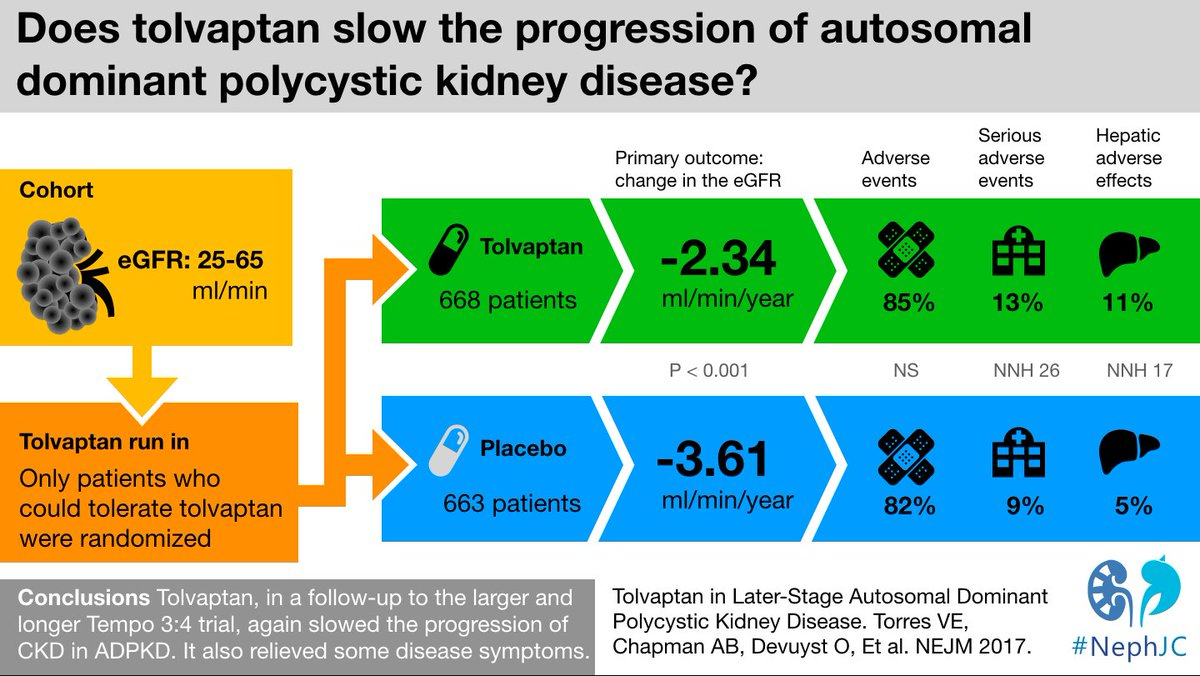 #NephJC this week is going to have two different #VisualAbstracts for the #REPRISE Trial of ADPKD. Here is the first one, the second is pending. This is revision 1, looking for feedback.<br>http://pic.twitter.com/eX8PkUXI1n
