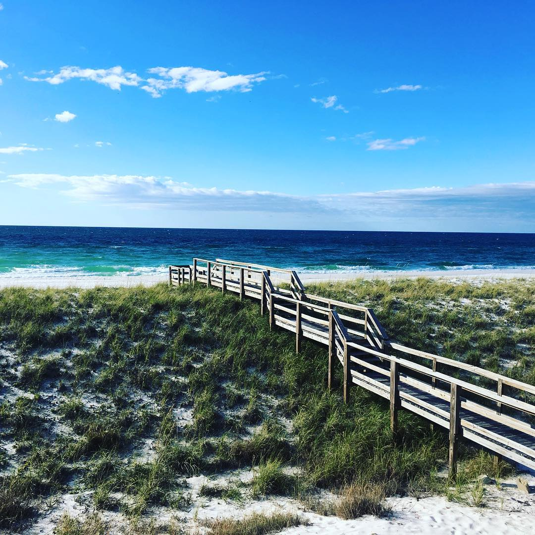 RT @RelaxInNavarre: Our favorite Monday blues (...and greens) 💙 #LoveFL #RelaxInNavarre  📷: IG azulhome https://t.co/7S5CbGLgBa