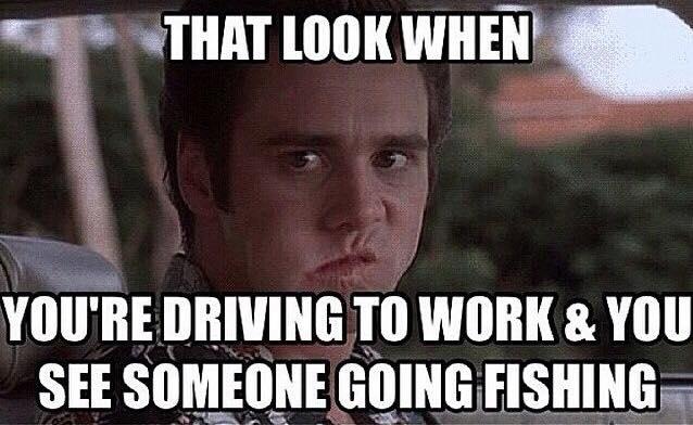 Happy Monday Meme Funny : Funny happy monday meme