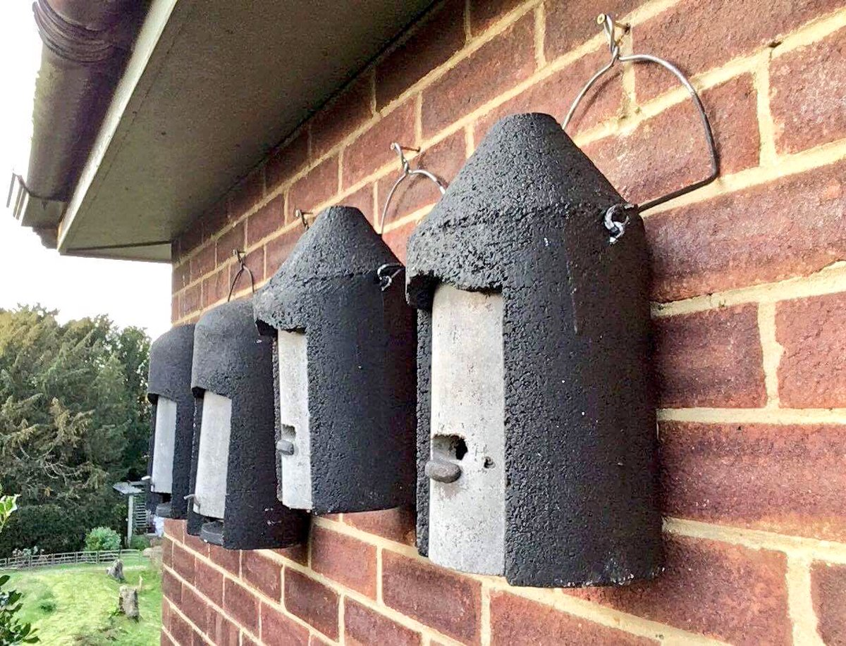 The Erfly Brothers On Twitter If Every House Put Up Just One Bat Box It Would Make A Huge Difference Rt You Think More Should Be Done To Help Our