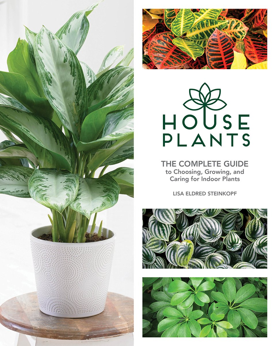 I did a review of Lisa&#39;s book!  I LOVE IT   https:// brenhaas.com/house-plants-t he-complete-guide-book-review/ &nbsp; …  #gardenchat <br>http://pic.twitter.com/txOL7We9yj