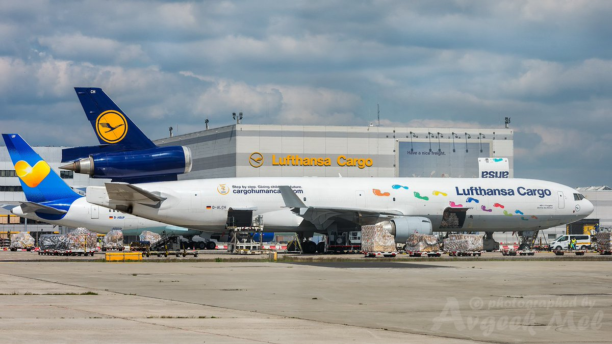 The colourful @lufthansa Cargo MD-11 Freighter D-ALCH being loaded at @Airport_FRA for her next flight #avgeek #Lufthansa #aviation #MD11F #MD11 #FRA #FRAPort<br>http://pic.twitter.com/zqcH0NZ6GB