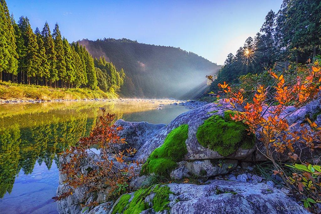 秋の色、詰め合わせ。 (一昨日岐阜県にて撮影) 今日もお疲れさまでした。明日もおだやかな一日になりま…