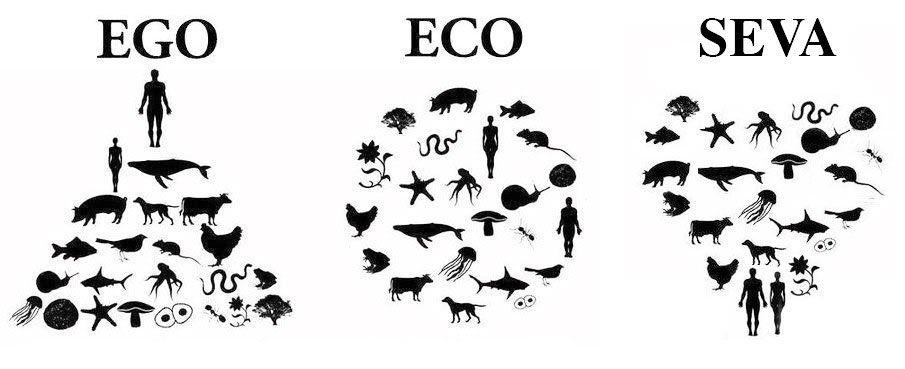 Rezultat slika za ego i eco