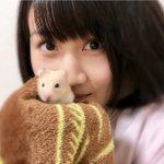 ameblo.jp/nmb48/entry-12…1日2回更新になってしまいましたがブログみてね!コ…