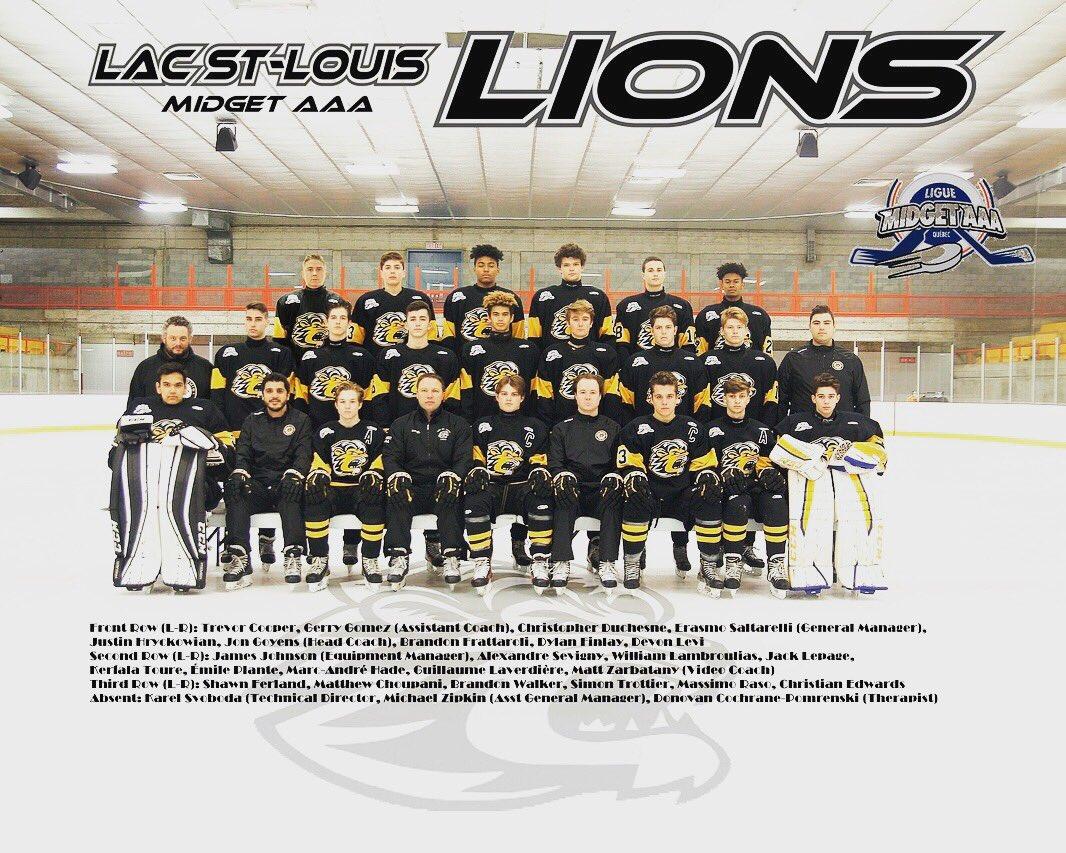 Midget aaa lions