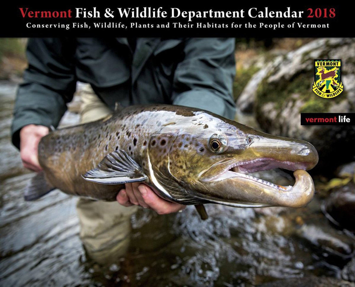 test Twitter Media - The 2018 VT Fish & Wildlife calendar is now on sale! Get yours here: https://t.co/ccH9UPepyF https://t.co/LJhn1Rbi8f