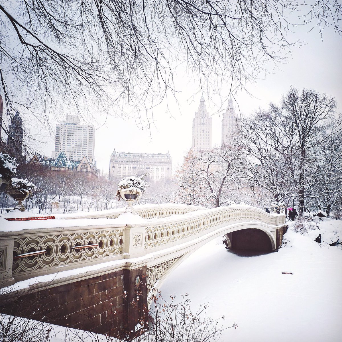 Central Park by travelinglens #newyork #nyc <br>http://pic.twitter.com/SCDjh1oXFS