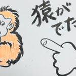 おはようございます。今月に入り名古屋市北区、守山区、尾張旭市、春日井市など広域に猿が目撃されています…