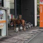 思わず二度見する光景!駐輪場に停められていたのは自転車じゃなく、馬!