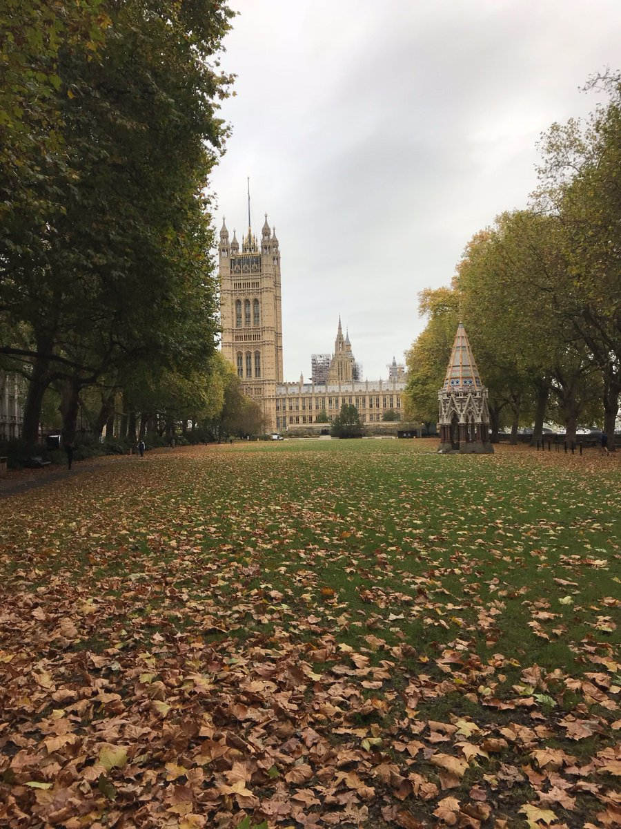 Autumn In Victoria Tower Gardens...Who Would Ever Want To Change This?  Please Fight The Misguided Idea Of Putting The Horrendous Holocaust  Memorial And ...