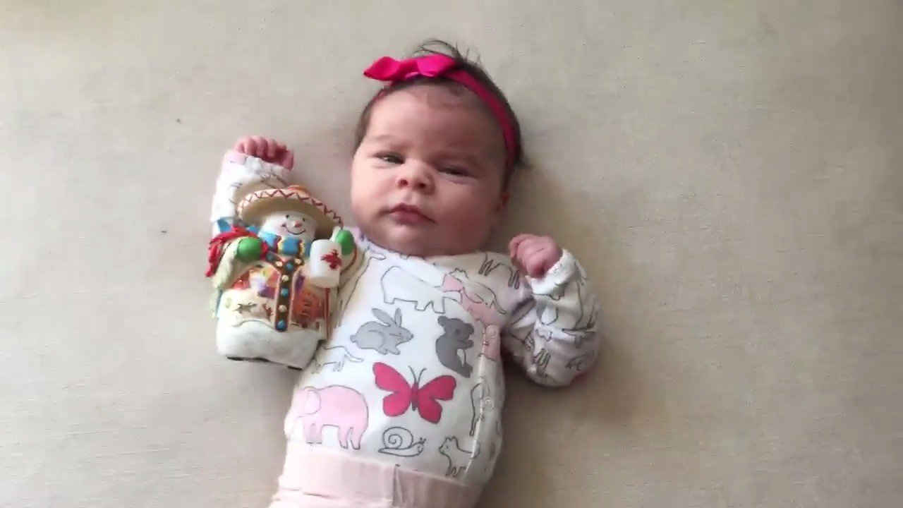 RT @ThePerezHilton: 6 weeks old today! And the countdown has begun!! https://t.co/Z56cDAWeWO   #MayteHilton https://t.co/IHRmJLJMdB