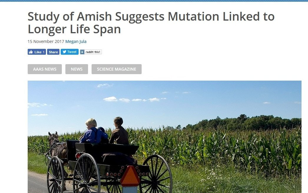 Not All Rare Genetic Mutations Are Detrimental - Some May Be Quite Beneficial  https://www. aaas.org/news/study-ami sh-suggests-mutation-linked-longer-life-span &nbsp; …  #SNRTG #genomics #education #OpenScience #DataScience #tech #RareDisease #science #BigData #genetics<br>http://pic.twitter.com/gJS9FSErNj