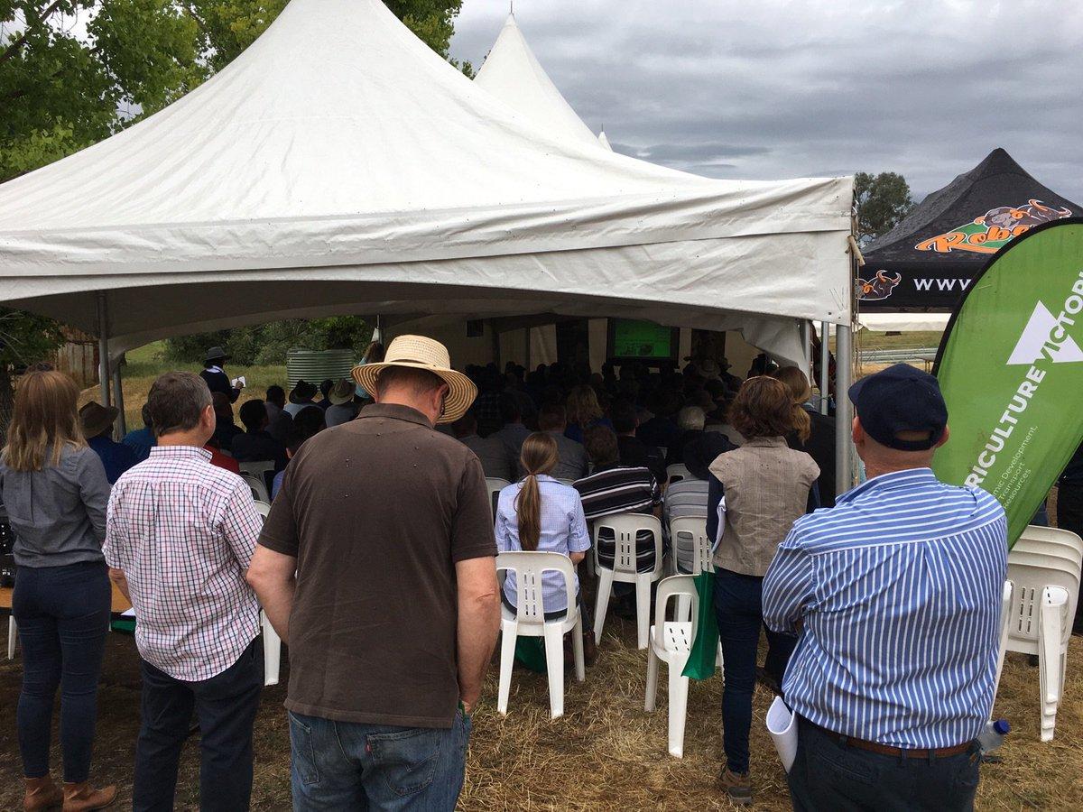 Lets talk about improving productivity through the use of #eID - on farm workshop @VicGovAg #AusAg #EID #Individualanimalmangement<br>http://pic.twitter.com/czgkK2yaXQ