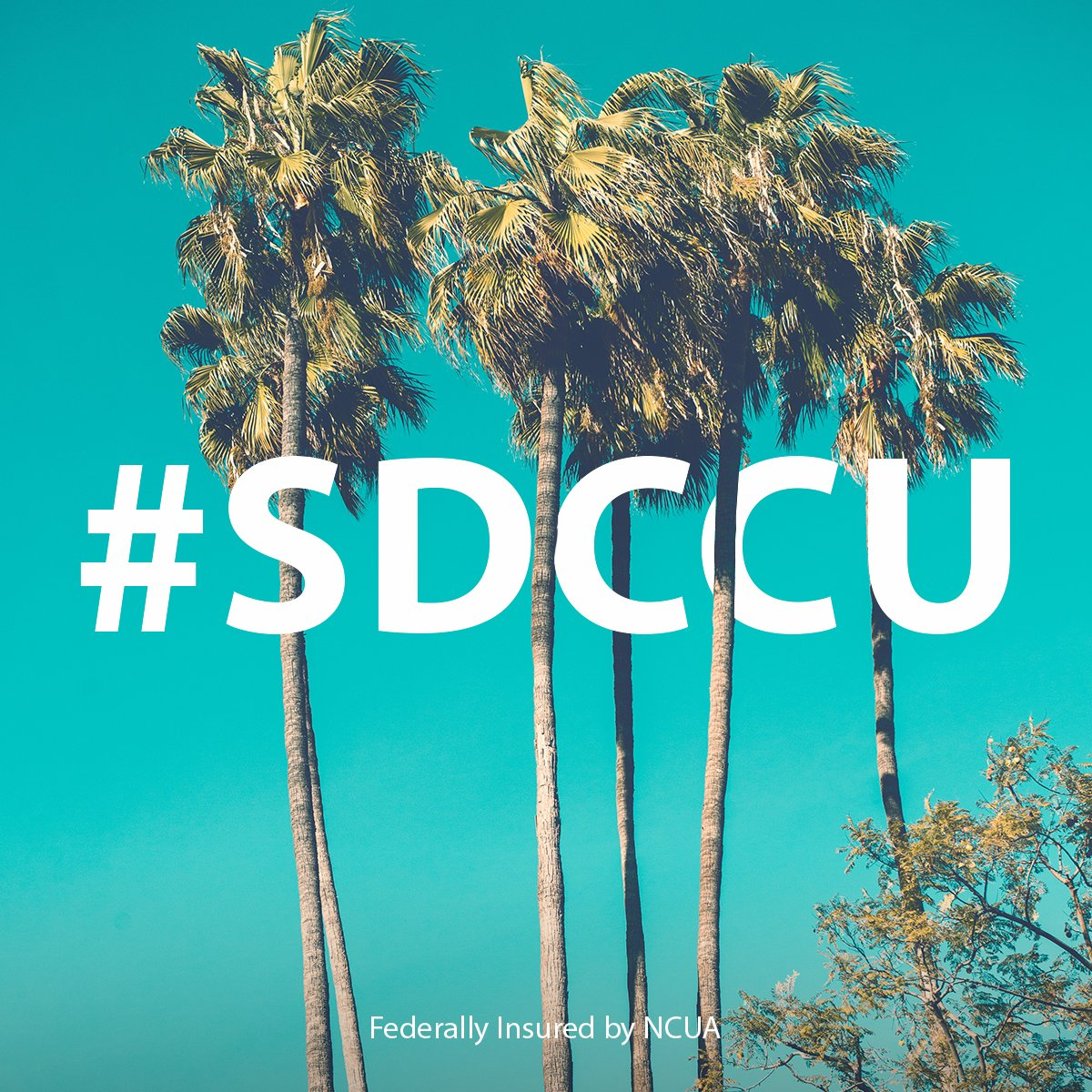 """Sdccu Customer Service >> SDCCU on Twitter: """"Putting the San Diego in #SDCCU. Share how you're enjoying San Diego with our ..."""