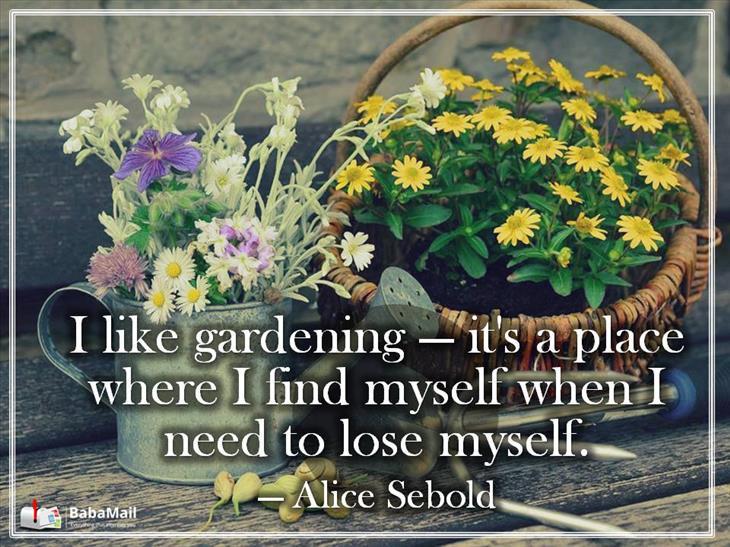 We are selling beautiful planters that can make your garden more beautiful. Visit  http://www. suecogifts.com / &nbsp;    #Garden #Gardening #Flowers #petals #season #Shopping #backyard #yard #blooms #furniture #Planters #planting #Plants #Pot #flowerpot<br>http://pic.twitter.com/0bTbJvJN0p