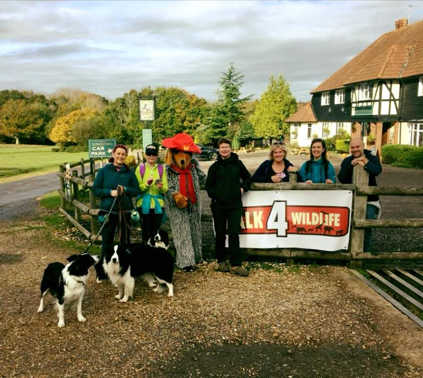 test Twitter Media - Thank you to @WetnoseDay for their extremely generous donation £1,540.32 to help towards are veterinary costs. Three of their 'Wetnose Warriors' completed a 20 mile walk in the New Forest and nominated us to receive a share of the funds, thank you for supporting us! https://t.co/zCofKOkSHM