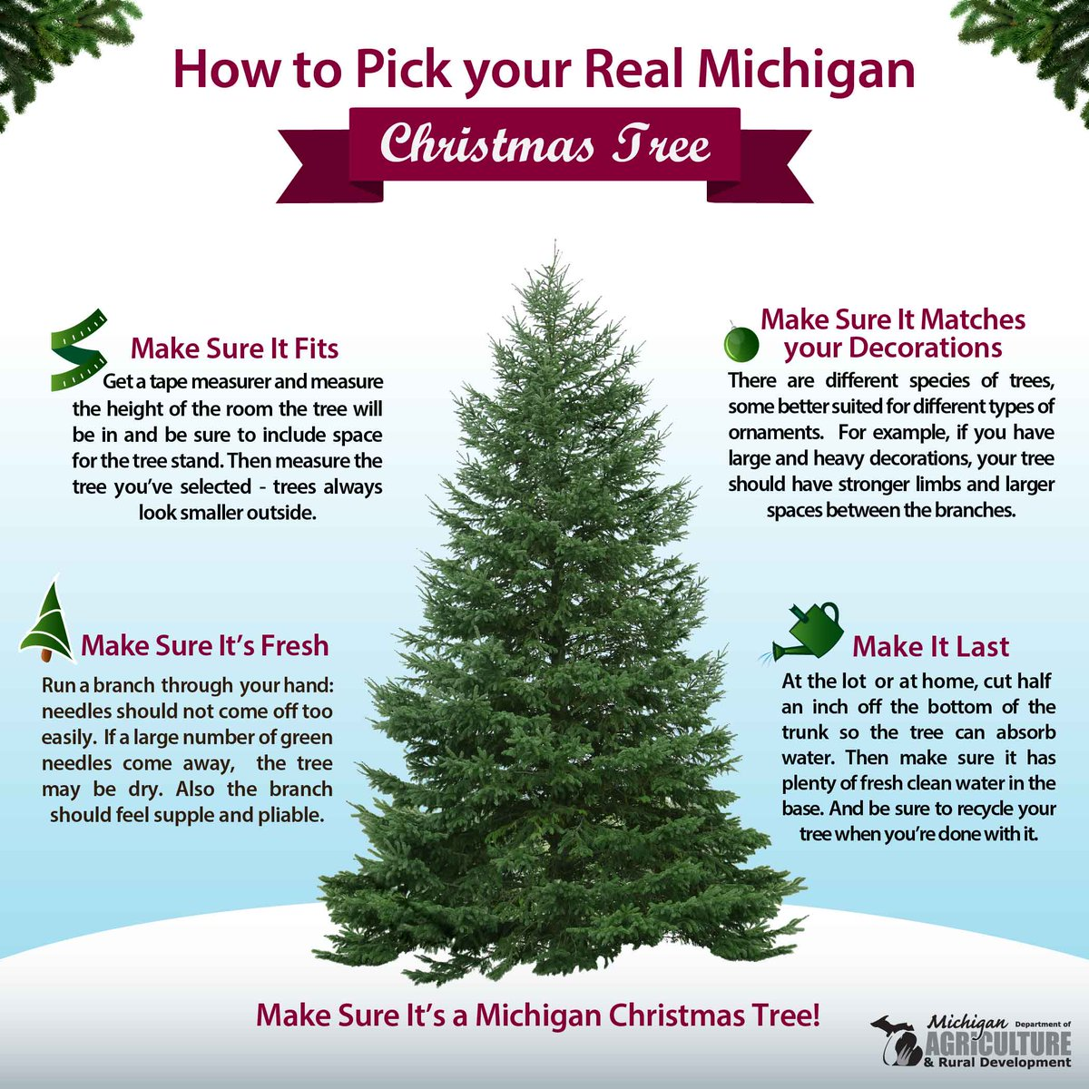 Pick the perfect Christmas tree with the...
