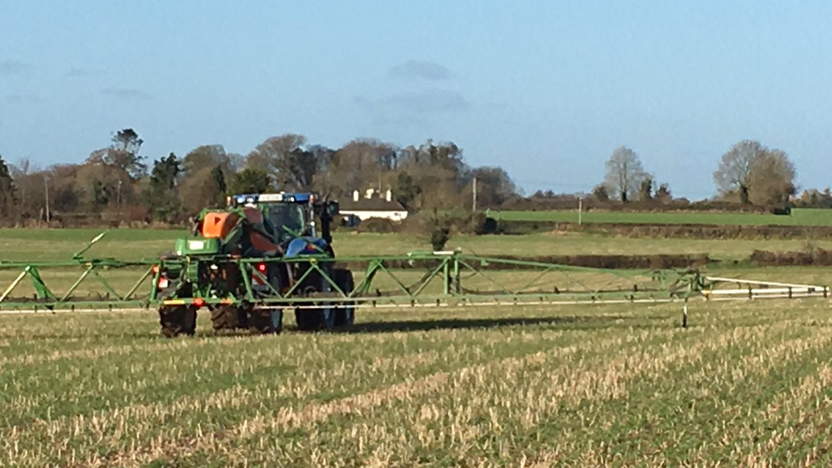 Applying Nuttition to crops instead of pesticides, trying to reduce chemicals by keeping plants healthy, Phosphite, Magnesium and Kelp being applied to help root growth and photosynthesis #IPM #baseirl #wheat<br>http://pic.twitter.com/qopUcWBJeN