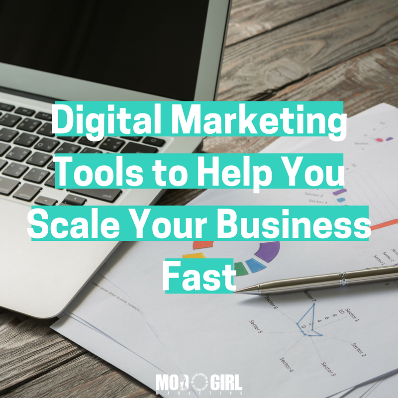 Not sure which #marketingtools are best for your business? Check out my 24 favorites for @ModGirlMktg: https://t.co/Uw3CZjl99X