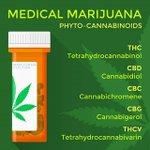 #Phytocannabinoids @azmmjdoc . https://t.co/dYHRqr99hu 6022776537 for more Info! #azmmjdr #azmmj #mmj #prop203 #azprop203 #cannabis #KnowledgeIsPower #CannabisCommunity #AzCannabis #themoreyouknow #legalizeweed #recreationalcannabis #medicalcannabis #medicalmarijuana #chronicpain
