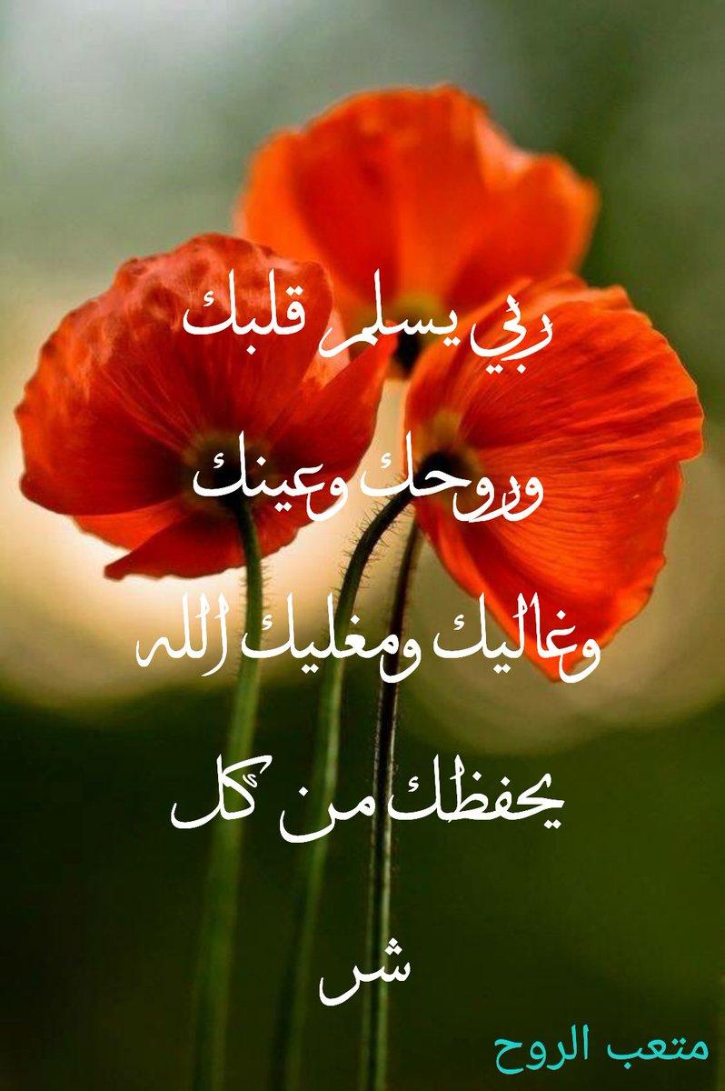 متعب الروح En Twitter الكفو يستاهلك الله يسلمك من كل شر