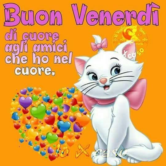 """Famoso Matteo on Twitter: """"@melamare7 buongiorno e buon venerdì  ZV04"""
