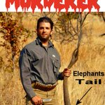 #DonaldTrumpJr The sociopathic apple doesn't fall and slither far from the tree. Here he is proudly displaying the tail after murdering a DEFENSELESS ELEPHANT! DISGUSTING! SICKENING!