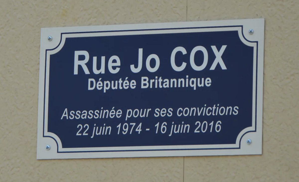 Jo Cox MP was murdered by a far right fanatic shouting 'Britain First'.  The French honour her: name a street after her.   The US president retweets racist hatred from Britain First.   Are you sure Brexit is a good idea?  Because the world is changing, for the worse, very fast.