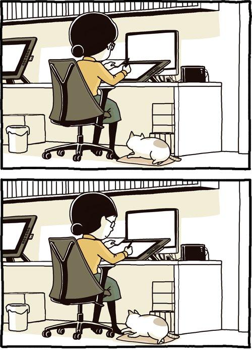 猫あるあるw自分から遊んでおいて自分でパニックになるwww