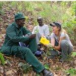A beautiful story on the work of my dear friend, #ethnobotanist, & #NatGeo #Explorer @MariaFadiman   https://t.co/OdhCAXjEjH  #ethnobotany #sciencecommunication #womeninscience #iamabotanist #nature #research
