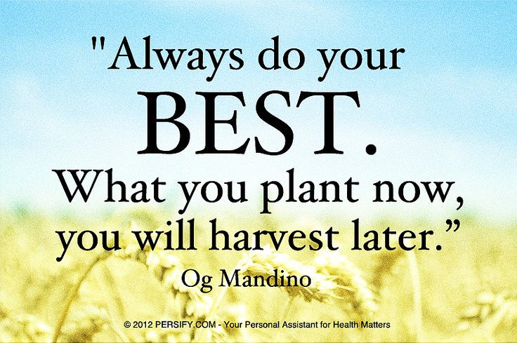 El Diablo On Twitter Always Do Your Best What You Plant Now