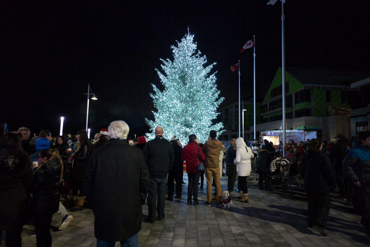 Image result for friday harbour tree lighting