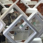 宝石の国フルコンプ標本、ブースの方から場所と写真掲載の許可をいただきました。ミネラルショー会場2階の…