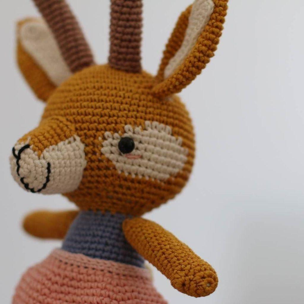 Super Easy Amigurumi: Crochet Cute Animals: Hoshi, Mitsuki ... | 1024x1024