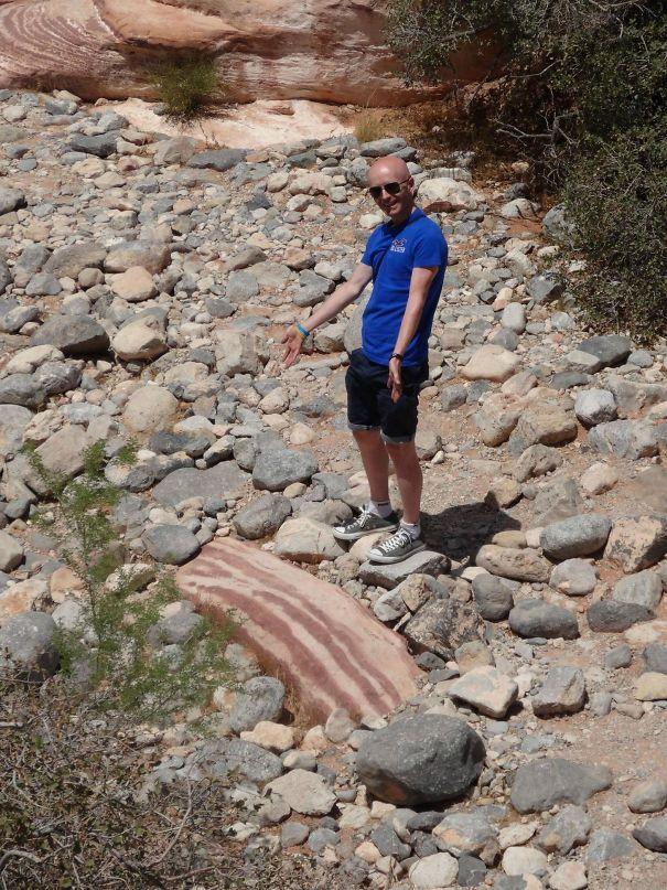 どう見てもベーコンな岩。どう見てもチョコレートな鉱石。どう見てもティラミスな足跡。どう見てもじゃがいもな石。