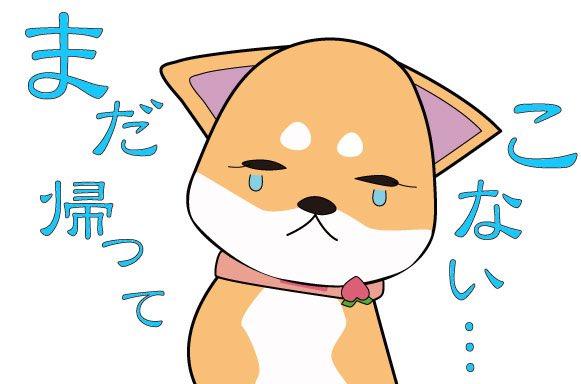 টইটর キザキヤホワイトボードアニメーション 柴犬ちゃん 赤
