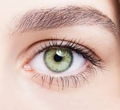 Don&#39;t take your eyes for granted. Take these easy steps to keep your peepers healthy.  http:// wb.md/1bs0CYC  &nbsp;   #tips #eyes #health #eyesight <br>http://pic.twitter.com/U1PJoer2u3